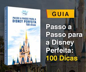Passo a passo para uma Disney perfeita!