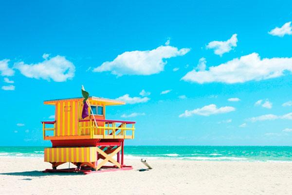 Miami-Google