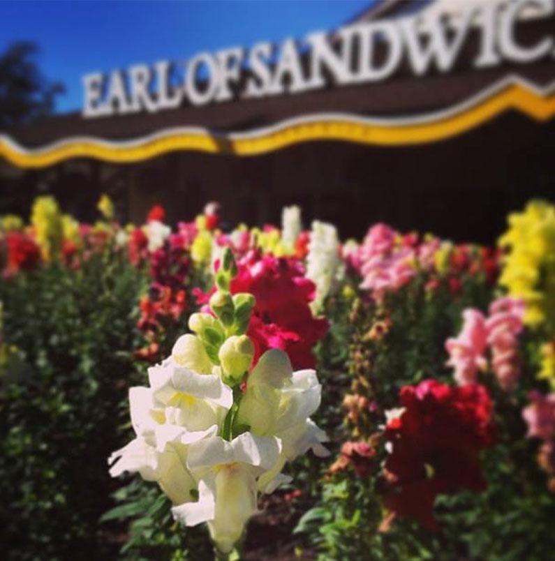 earl-of-sandwich-downtown-disney