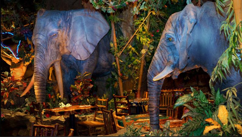 rainforest-café-orlando-dicas
