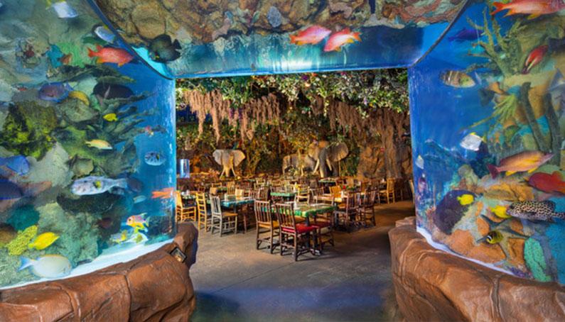 restaurante-floresta-disney