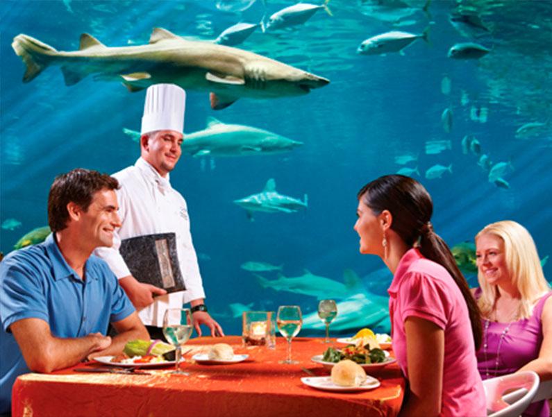 restaurante-legal-caro-orlando