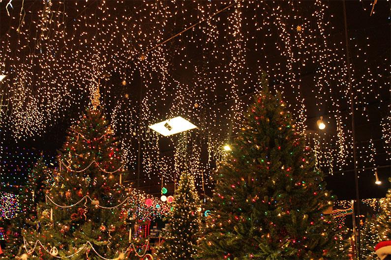 loja-de-Natal-perto-orlando