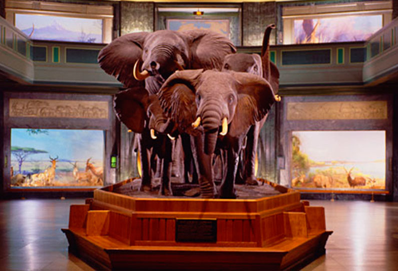 dicas-museu-nova-york-viagem-dicas