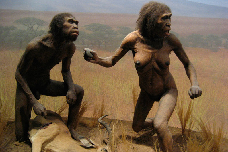 dicas-ny-museu-historia-natural-o-que-fazer