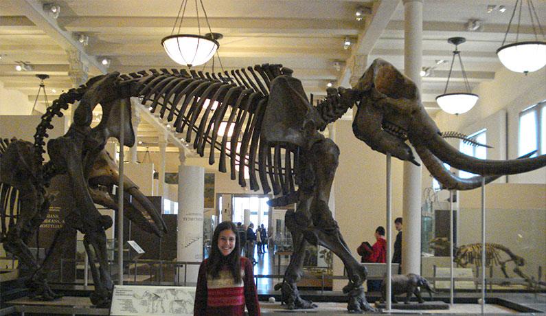 nine-boianovsky-mamute-museu-história-natural