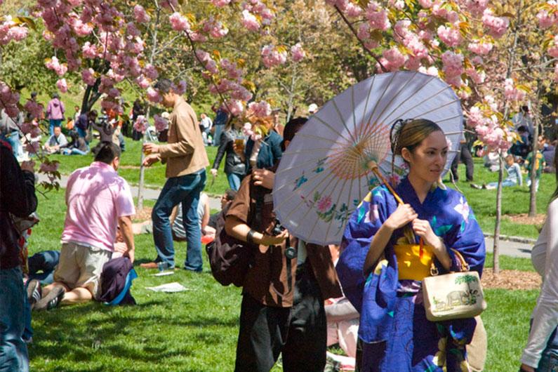 dica-viagem-nova-york-festival-japones-cerejeiras