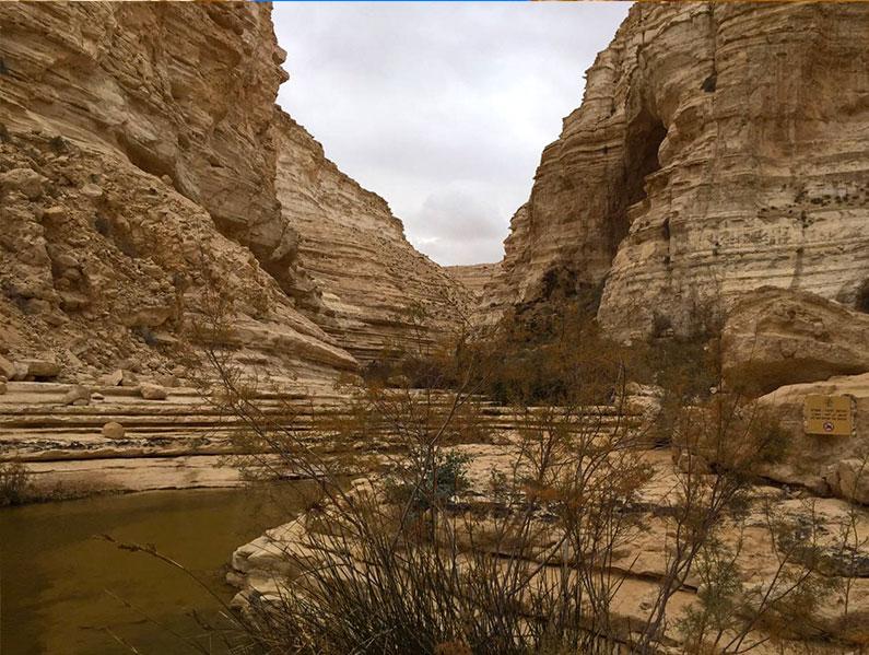 deserto-trilha-neguev-ein-avdat