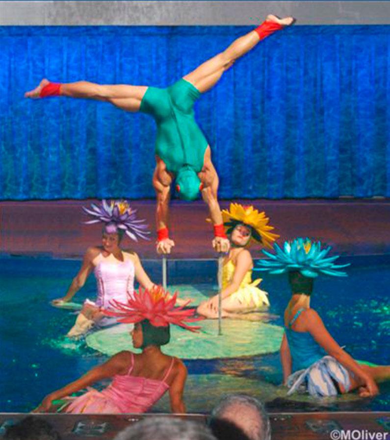 show-nado-sincronizado-piscina-royal-caribbean-oasis