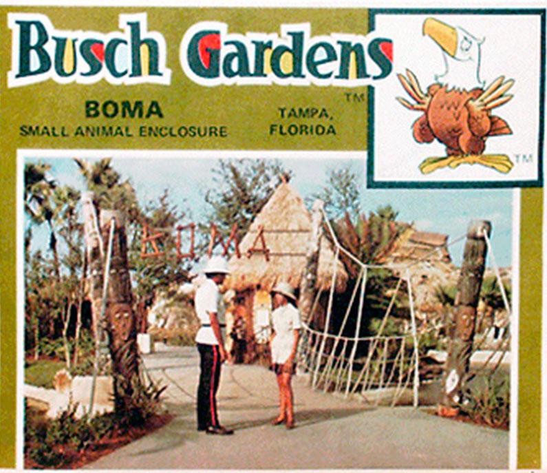 busch-gardens-montanhas-russas-orlando-tampa-historia
