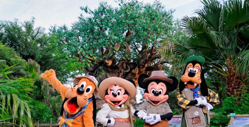 Roteiro de parque: Disney's Animal Kingdom