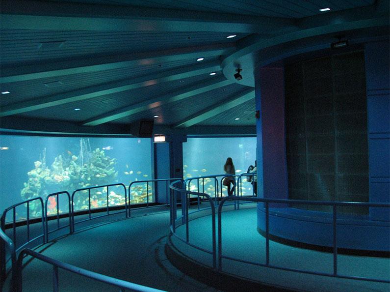 epcot-aquario-gigante